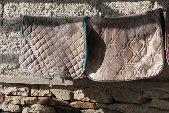 Different Types of Horse Blankets. When to Blanket a Horse