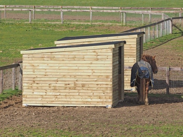 The Importance of DIY Horse Shelter