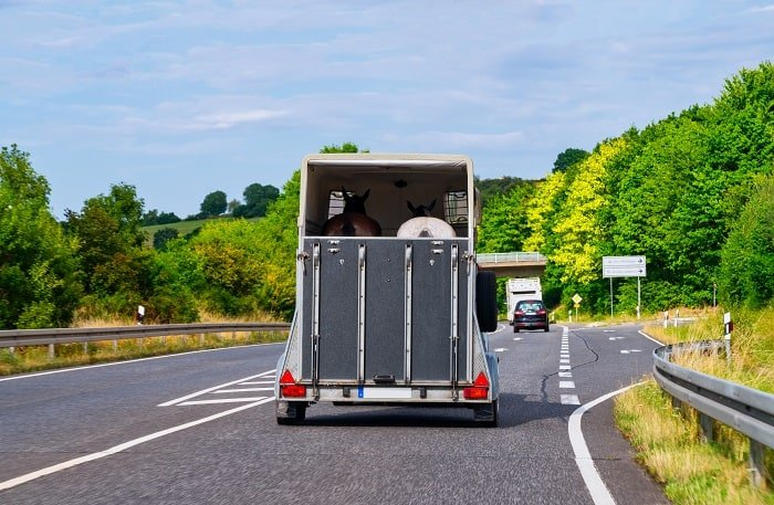 Where to Rent a Horse Trailer?